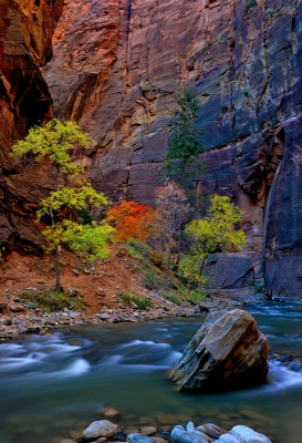 Fall In The Zion Narrows