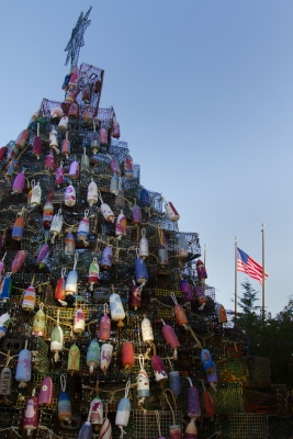 Lobster Trap Tree