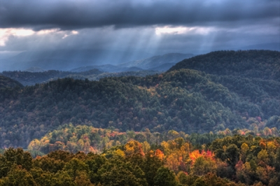 Autumn Light In Great Smoky Mountain National Park