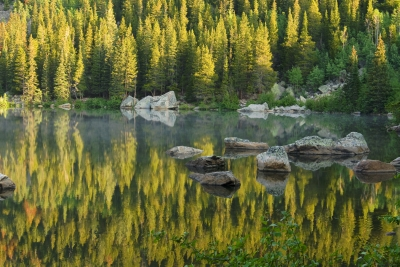 Bear Lake Reflection