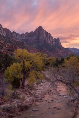 Autumn Light Over The Watchman