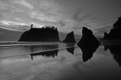 Ruby Beach Silhouettes