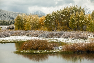 Ox Bow Bend Dusting