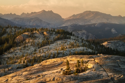 Last Light, Tuolumne And Saw Tooth Range