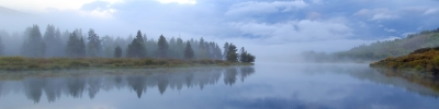 Morning Mist At Oxbow Bend