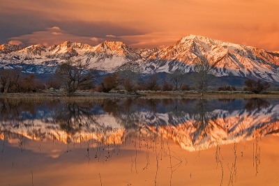 Eastern Sierra Reflection