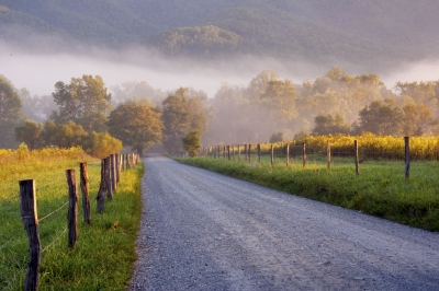 Fog And Sun Rise On A Lonely Road In Cades Cove.