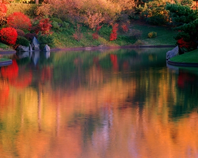 Autumn Reflection In A Japanese Garden