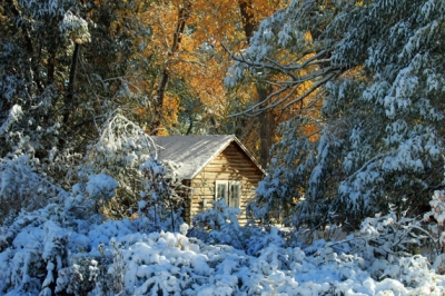 Cabin In First Snowfall