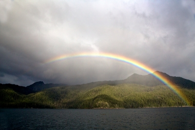 Rainbow Over Tongass Wilderness