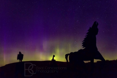 Horse Play In The Northern Lights