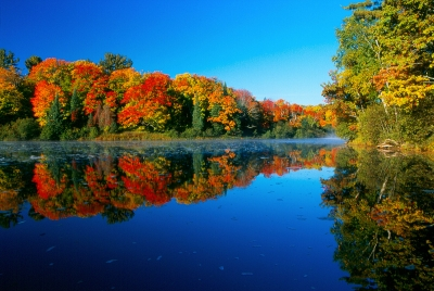 Autumn On The Tahquamenon River