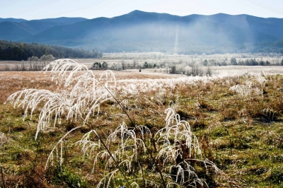 Frosty Morning At Cades Cove.