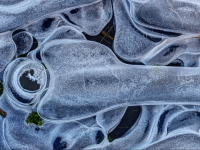 Bone & Socket An Ice Abstract