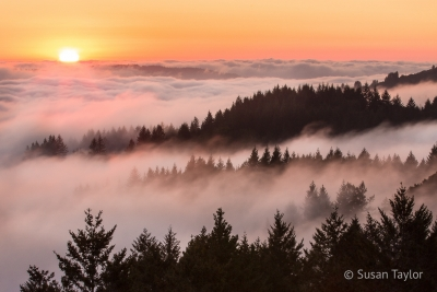 Bolinas Ridge Foggy Sunset