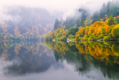 Reflections Of Fall Along The Umpqua