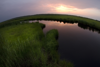 Fisheye Marsh