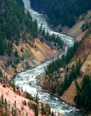 Zigzag Of The Yellowstone