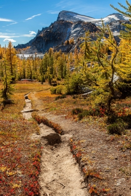 Hike Of The Larches
