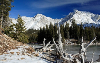 Early Winter At Elbow Lake