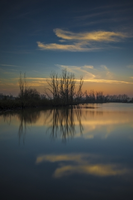 After Sunset @ Biesbosch National Parl, Netherlands