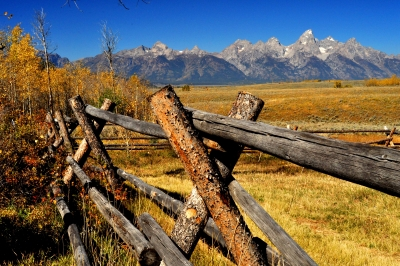 Grand Tetons Fenced Landscape