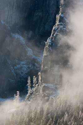 Trees, Snow, Mist, Rock
