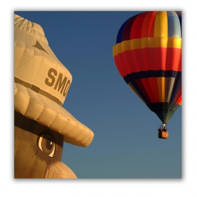 Hot Air Bear Watching Baloon