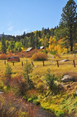 Fall Colors By Hope Valley
