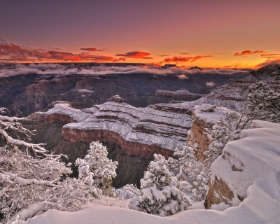 Canyon's First Light