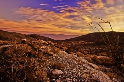 Rising Sun Lights Up The Anza Borrego Desert