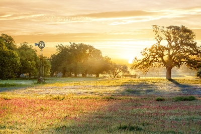 Early Morning Colors In Texas