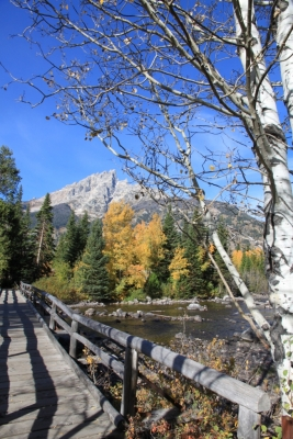 First Days Of Fall – Grand Teton Nat´l Park I