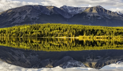 Reflected Forest And Mountains, Pyramid Lake