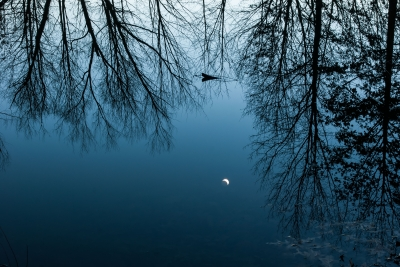 Moon Pond Reflection