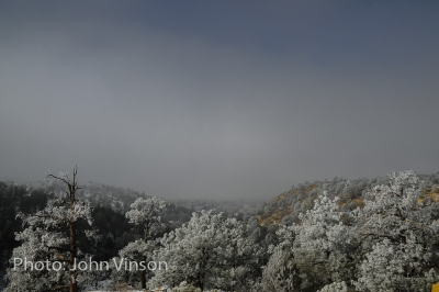 Clearing Fog & Frost
