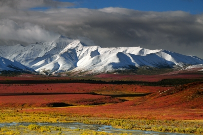 Alaska Range In Autumn
