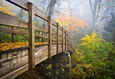Tanawha Trail – Rough Ridge Autumn Foliage Nc