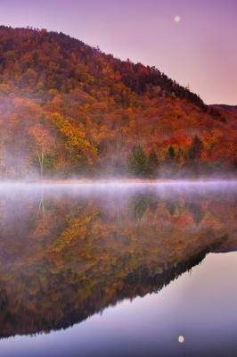 Autumn Reflections I