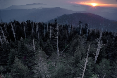 A Bird's Eye View From Clingmans Dome