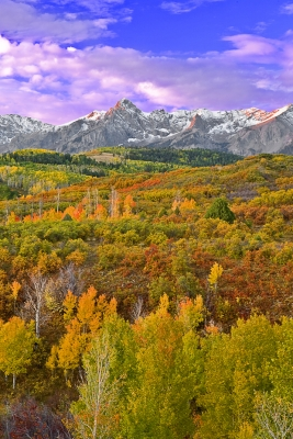 Colorado, Mountain Sneffels, Rocky, San Juan Mountain, Sunrise, Fall Colors, Foliage