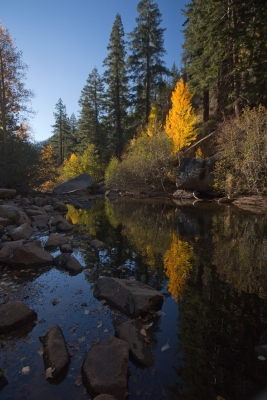Reflections On The Carson River