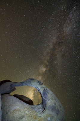 Nobius And The Milkyway (portrait)