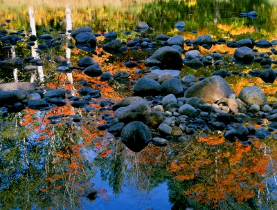 New Hampshire River Reflection
