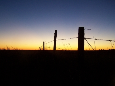 Fenceline Sunset