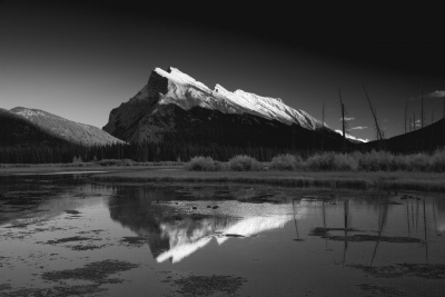 Majestic Mount Rundle