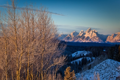 Golden Teton