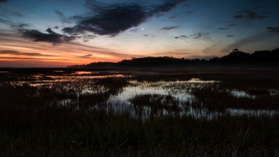 Edisto Island Marsh At Sunrise