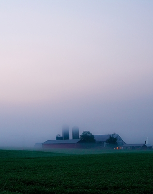 Fog Over Farmland