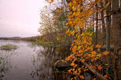 Fall, Reservoir, Trees, Leaves, Water, Sky, Hdr